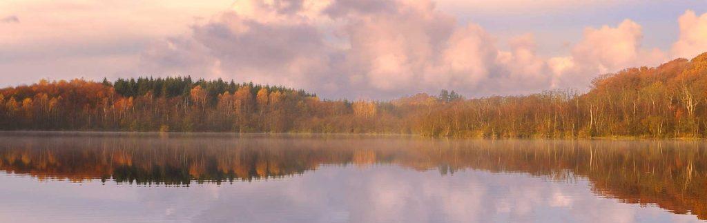 lake front scene