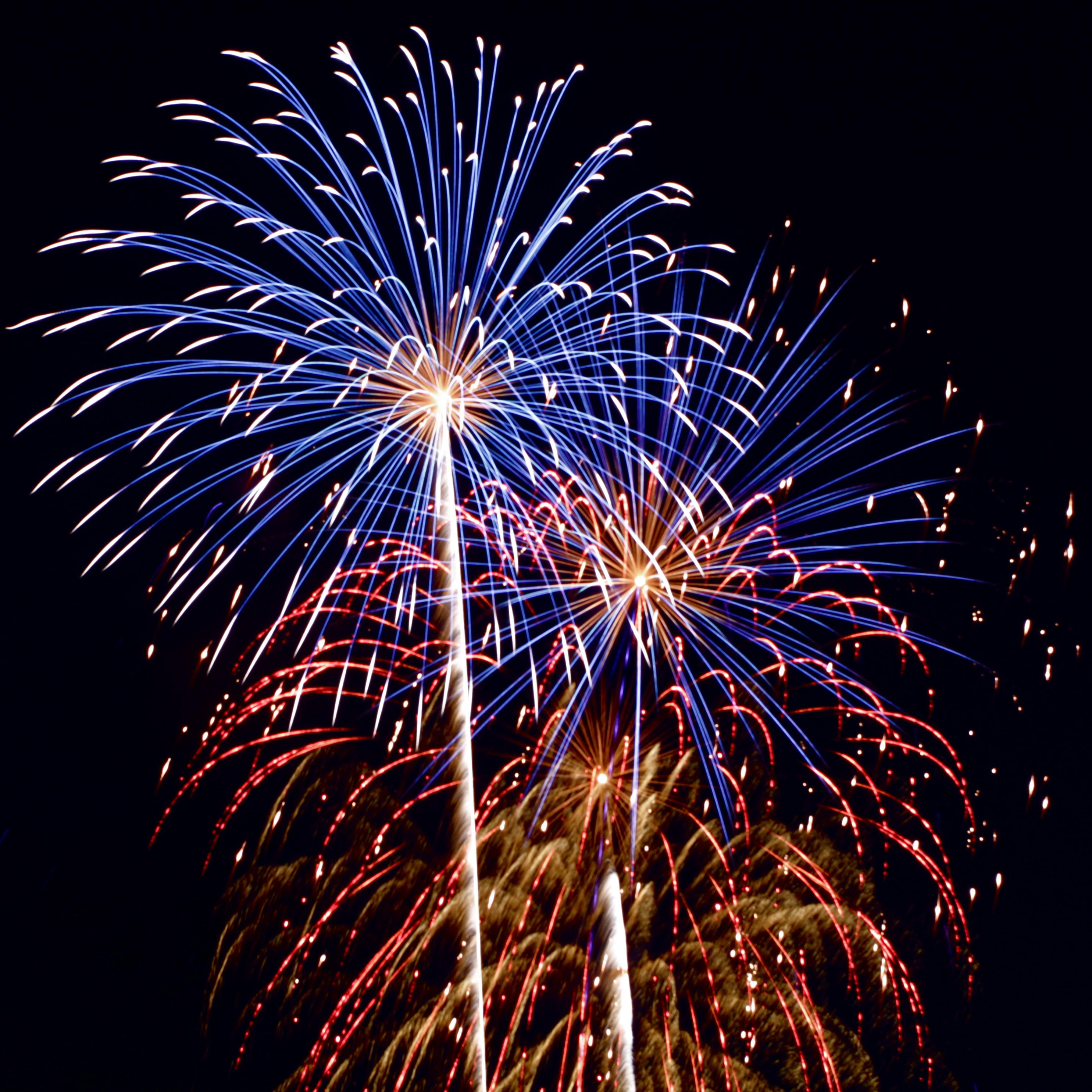 Fireworks_8159